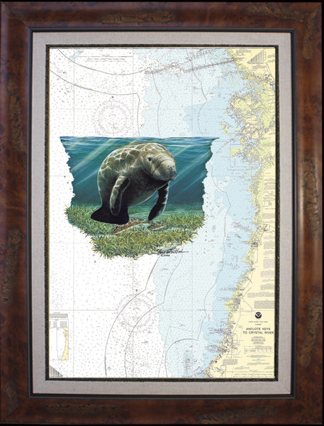 Crystal River Manatee Chart Art