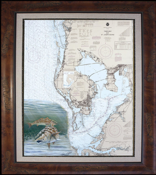 Tampa Bay Redfish Chart Art