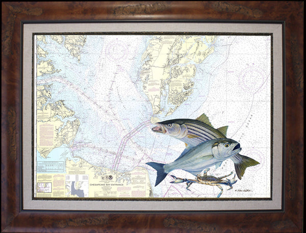 Chesapeake Bay Entrance Chart Art