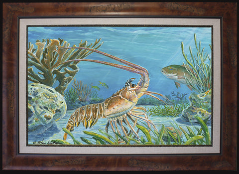 Fine Art - Divers Dream (Spiny Lobster)