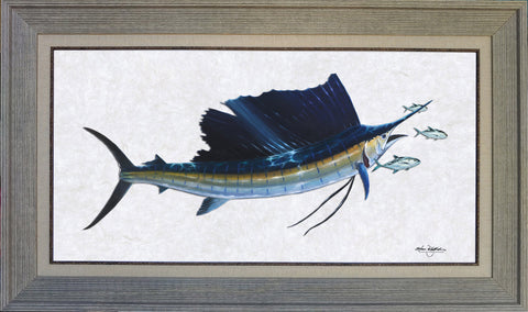 Acrylic Illustration - Sailfish