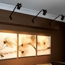 WAC Display and Accent Lighting