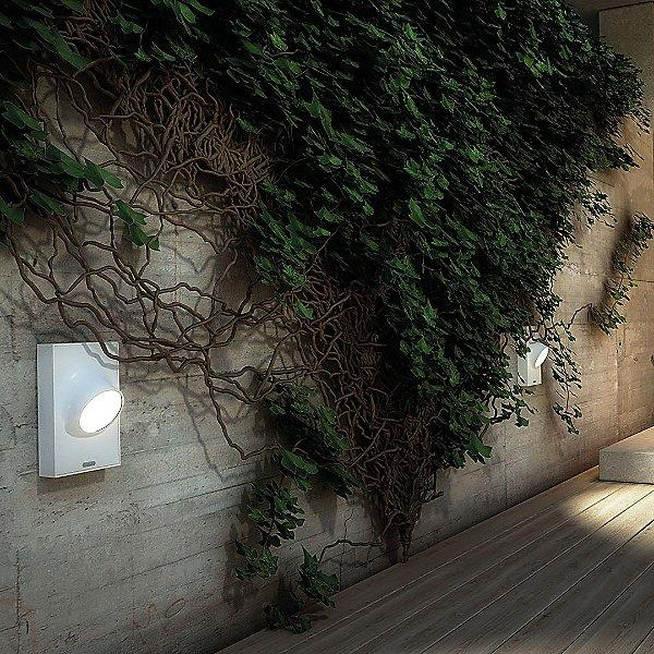 Ciclope Outdoor LED Wall Light - Display