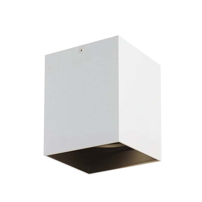"Exo 6"" LED Flush Mount - Matte White/Black Finish"