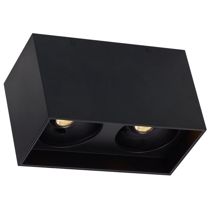 Exo Dual Ceiling Light - Matte Black/Black Finish