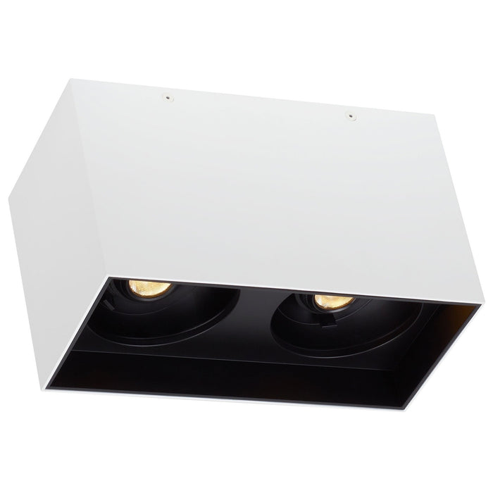 Exo Dual Ceiling Light - Matte White/Black Finish