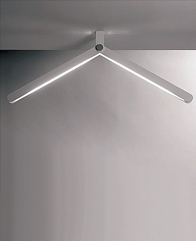 Flex Ceiling Light