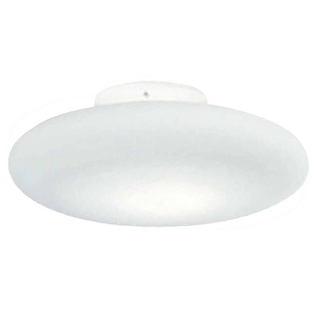 Mild Wall/Ceiling Light