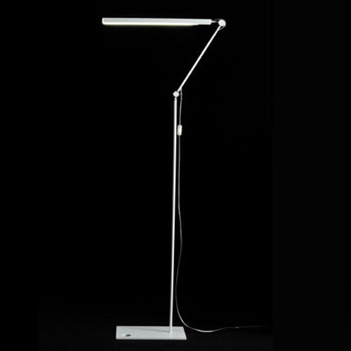 Mr. Ray LED Floor Lamp