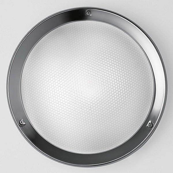 Niki Outdoor LED Wall/Ceiling Light - Stainless Steel