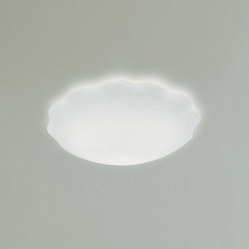 Nubia PP Ceiling Wall Light