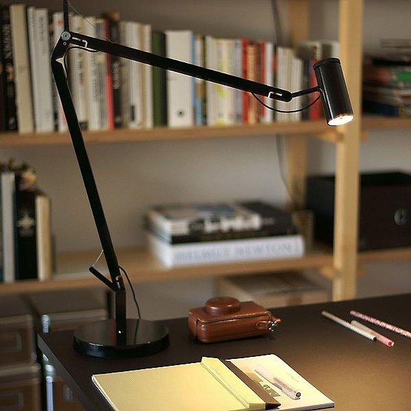 Polo Desk Lamp - Display