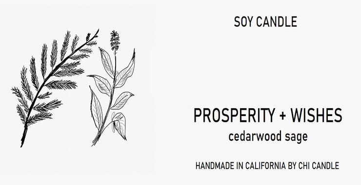 Prosperity + Wishes Soy Candle 8 oz Tumbler. Hand-sketched design label.
