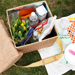 Wicker Picnic Cooler Seat