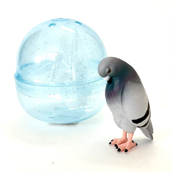 Tired Pigeon In Capsule