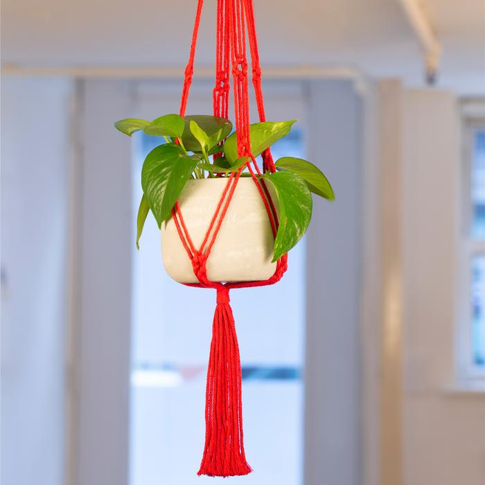 Red Macrame + Cement Planter