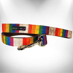 "1"" Dog Leash Rainbow Pride"
