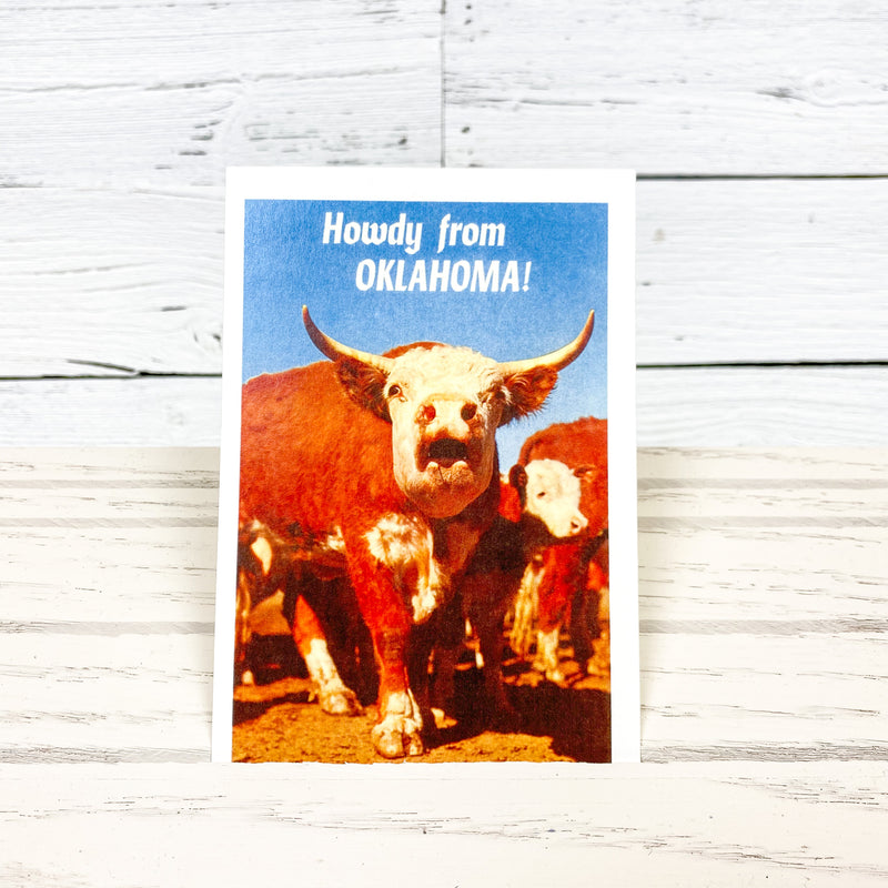 Howdy from OK! Hereford Steer Postcard