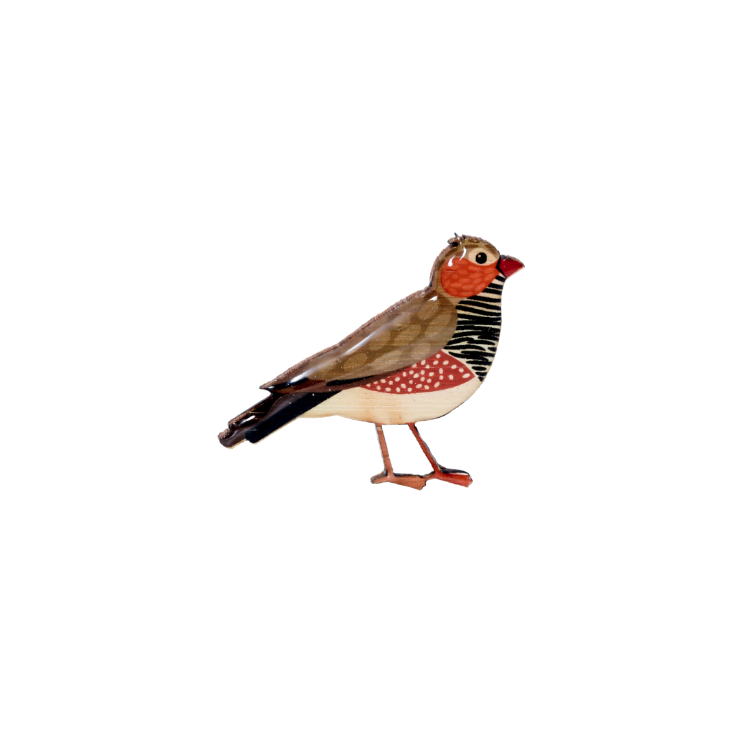Finch - Zebra Finch Brooch
