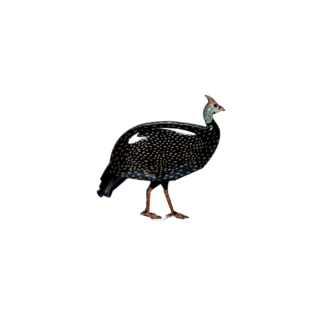 Guineafowl Brooch