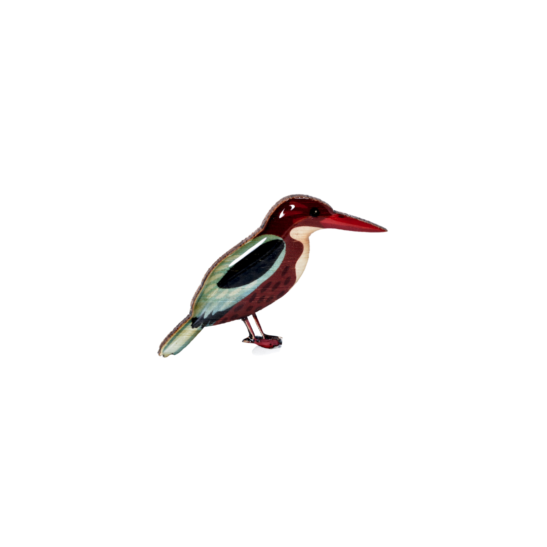 Kingfisher - White-Throated Kingfisher Brooch