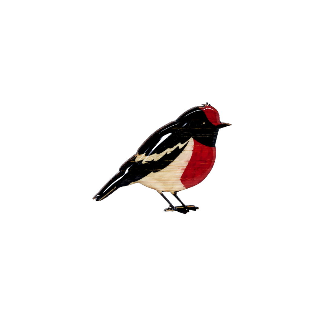 Robin - Red-capped Robin Brooch