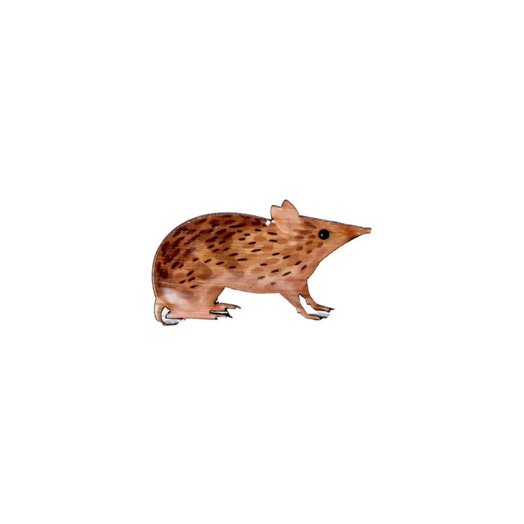 Bandicoot - Eastern Barred Bandicoot Brooch