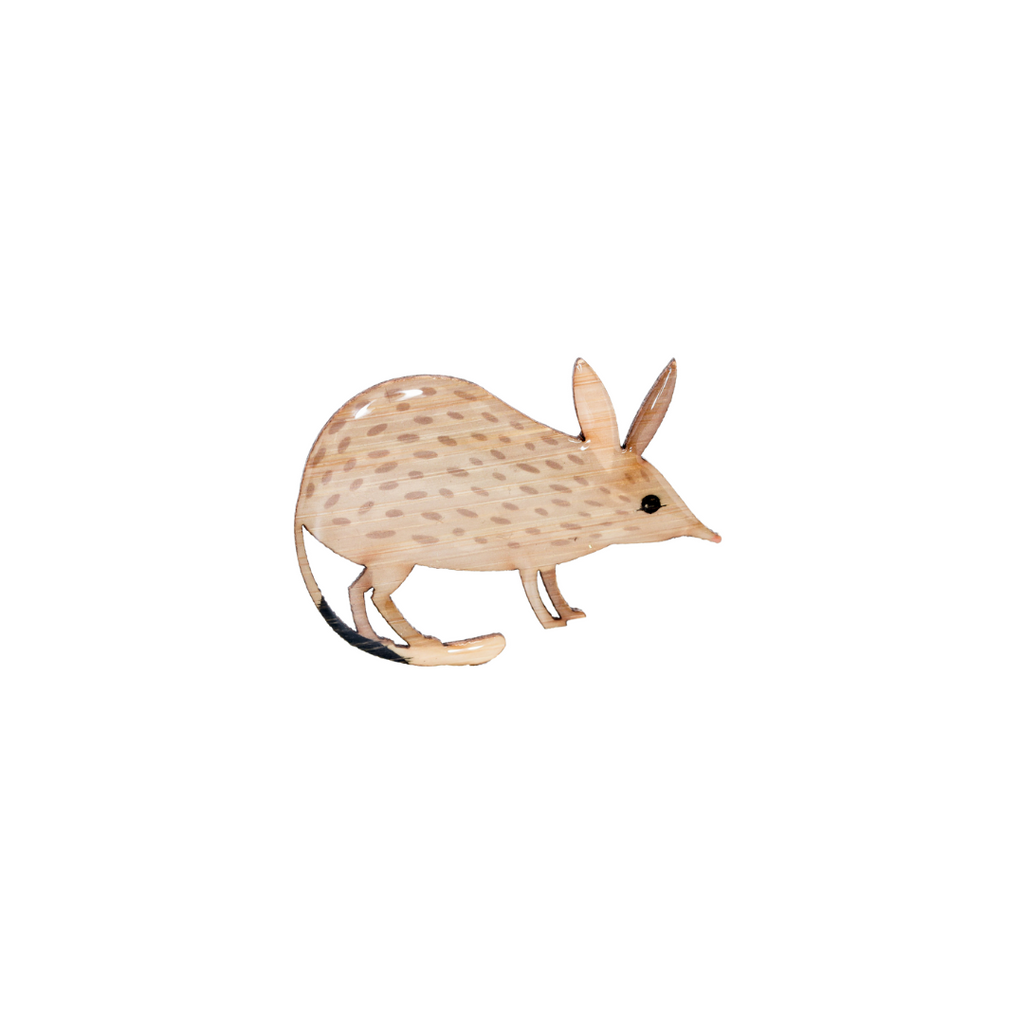Bilby - Greater Bilby Brooch