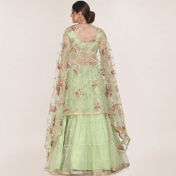 Light Olive Green Color Net Lehenga with Choli