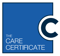 FREE Understanding Your Role - Care Certificate Standard 1 Training