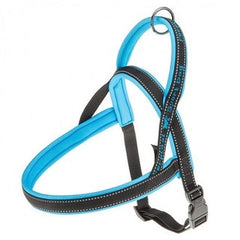 Sport Dog Harness - Blue