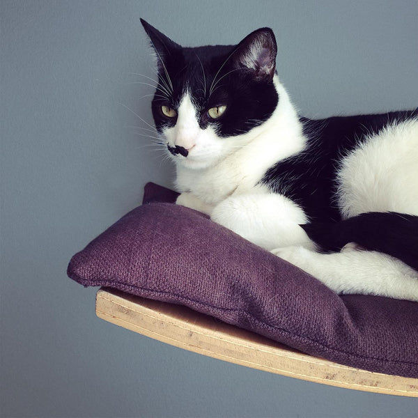 Benji + Moon | Wooden Cat Shelf