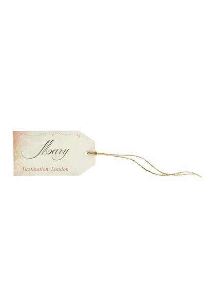 Aviation Luggage Tag Place Card