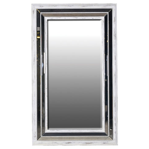 Large Mirrored Frame Mirror