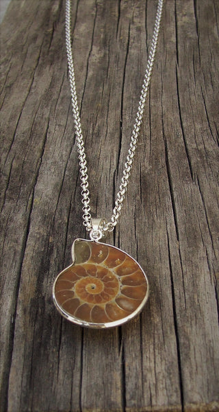 Ammolite Shell Fossil Pendant Necklace