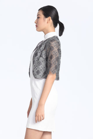 Silver And Grey Rhombus Lace Cropped