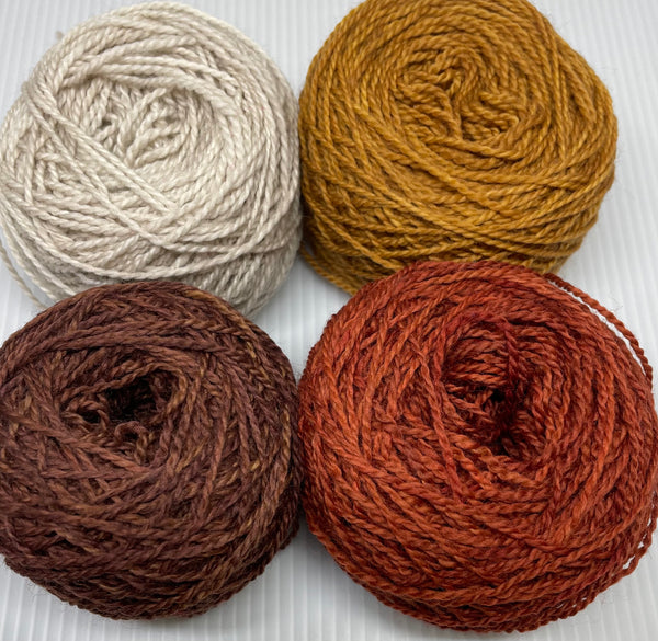 Gnutmeg ADVENTure Gnome MKAL Yarn Pack - Brooks Fall Colors