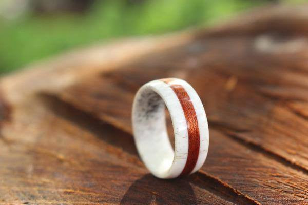 ELK ANTLER AND BLOODWOOD RING