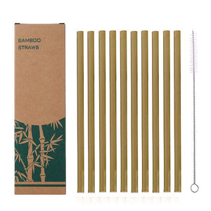 Eco Friendly Reusable Bamboo Drinking Straws Set of 10