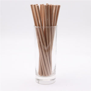 Eco Friendly Disposable Paper Drinking Straws Set of 25pcs