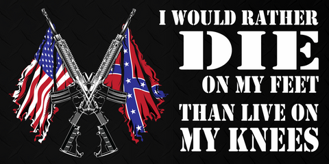 Southern Pride Sticker Collection  Stickers  Confederate Country - Rebel flag truck decals   how to purchase and get a great value safely