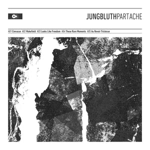 Jungbluth - Part Ache LP - Broken Limbs Recordings