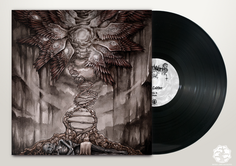 BLR076: Palace of Worms - The Ladder LP - Broken Limbs Recordings