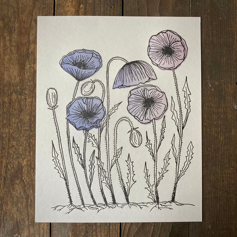 Icelandic Poppies - Print