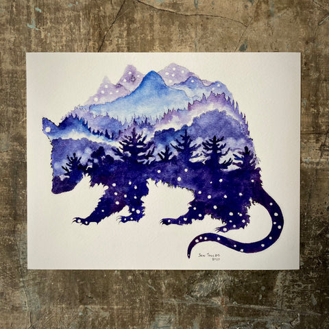 Mountain Opossum - Print