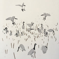 Canada Geese - Print