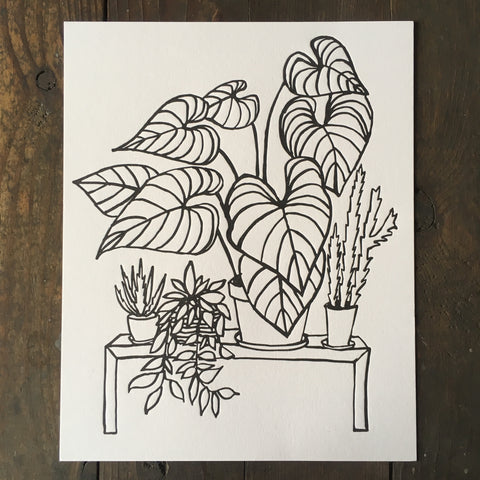 Indoor Plants - Print