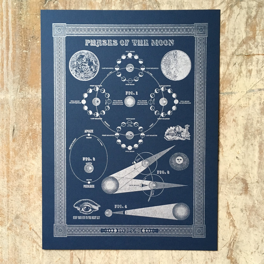 Phases Of The Moon - Print