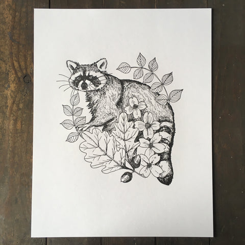 Raccoon With Dogwood And Oak - Print