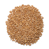 Hard red spring wheat berries | Hong Kong | Whole wheat berries